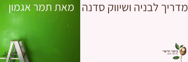 המדריך לבניה ושיווק סדנה תמר אגמון